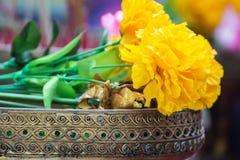 Blumengirlande auf Behälter Lizenzfreie Stockfotos