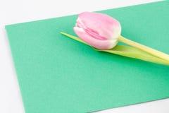 Blumengrüße Lizenzfreies Stockfoto