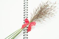 Blumengras mit rotem Bogen und Notizbuch stockbild