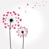 Blumengrußkarte Lizenzfreie Stockbilder