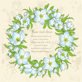 Blumengrußkarte mit Anemonen Stockbilder