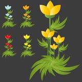 Blumengruppe der wilden Blumen Stockbild