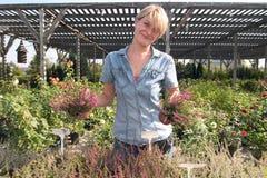 Am Blumenhändler Lizenzfreies Stockbild