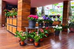 Blumenhändlers Lizenzfreies Stockfoto
