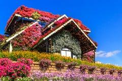 Blumenhaus auf einem Hintergrund von Wolken stockbild