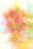 Blumenhintergrund. Lizenzfreies Stockfoto