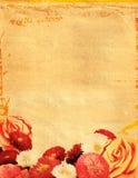 Blumenhintergrund Stockfoto