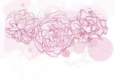 Blumenhintergrund. Lizenzfreie Stockfotos