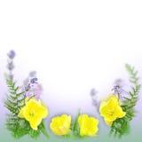 Blumenhintergrund als Urlaubspostkartedesign stockfoto