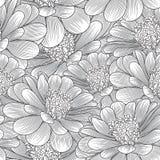Blumenhintergrund der nahtlosen Handzeichnung mit Blumenkamille Auch im corel abgehobenen Betrag Lizenzfreies Stockfoto