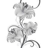 Blumenhintergrund der nahtlosen Handzeichnung mit Blumenlilie Auch im corel abgehobenen Betrag Stockfoto