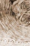 Blumenhintergrund der schönen Weinlese Lizenzfreie Stockbilder
