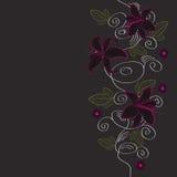 Blumenhintergrund, Grußkarte Stockfotografie