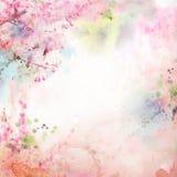 Blumenhintergrund mit Aquarell Kirschblüte Stockbild