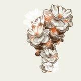 Blumenhintergrund mit blühenden Rosen, Hand-drawi Stockfotos