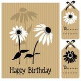 Blumenhintergrund mit Echinacea, Gänseblümchen, Illustrationsgrußkarte Lizenzfreie Stockbilder