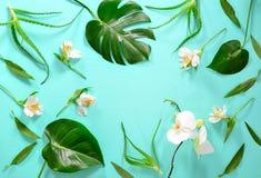 Blumenhintergrund mit einem Raum für einen Text lizenzfreies stockbild