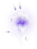 Blumenhintergrund mit Lilien Stockfotografie