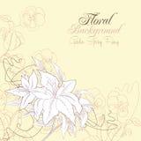 Blumenhintergrund mit Pansies und Lilien lizenzfreie abbildung