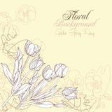 Blumenhintergrund mit Pansies und Tulpen Lizenzfreie Stockfotos