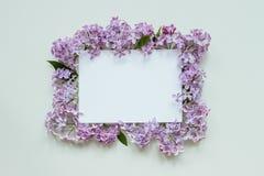 Blumenhintergrund mit Papierblatt Schöne frische Blumen und Stockfotos