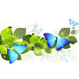 Blumenhintergrund mit Schmetterlingen Stockbilder