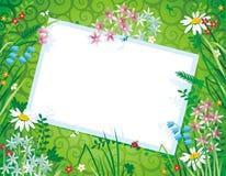 Blumenhintergrund mit unbelegter Karte Lizenzfreie Stockfotos