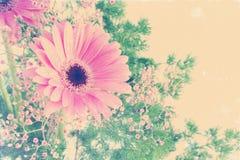 Blumenhintergrund mit Weinleseeffekt Lizenzfreie Stockfotos