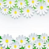 Blumenhintergrund, Rahmen mit Kamille der Blume 3d Stockbilder
