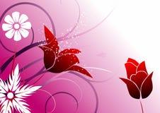 Blumenhintergrund - rote tulipes Stockbild