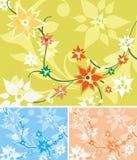 Blumenhintergrund-Serie vektor abbildung
