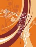 Blumenhintergrund-Serie Stockfotografie
