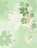 Blumenhintergrund-Serie stock abbildung