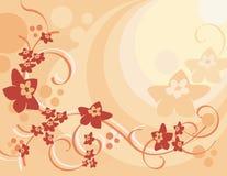 Blumenhintergrund-Serie Lizenzfreies Stockbild