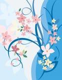 Blumenhintergrund-Serie Lizenzfreies Stockfoto