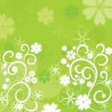Blumenhintergrund, Vektor Stockbilder