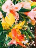 Blumenhintergrund von einem Blumenstrauß der bunten Blumenliliennahaufnahme Stockfotos