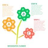 Blumenhintergrund-Wahlschritte Infographics technische Lizenzfreies Stockfoto
