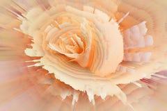Blumenhintergrundbl?ten-Blumensommer nave stock abbildung