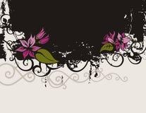 Blumenhintergrundserie Stockbilder