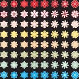 Blumenköpfe Lizenzfreies Stockfoto