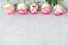 Blumenkarte, Blumenrahmen mit den rosa und weißen Rosen Lizenzfreie Stockfotos