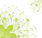 Blumenkarte mit Basisrecheneinheiten lizenzfreie abbildung