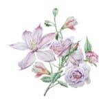Blumenkarte mit Blumen Clematis Rose Alstroemeria Dekoratives Bild einer Flugwesenschwalbe ein Blatt Papier in seinem Schnabel Lizenzfreie Stockbilder