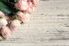 Blumenkarte mit rosa Hochzeitsrosen Lizenzfreies Stockbild