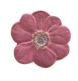Blumenkeramikfliesen Lizenzfreie Stockfotografie