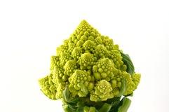 Blumenkohl Stockbild