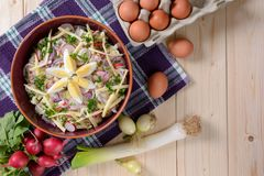 Blumenkohlsalat mit Kartoffeln, Hartkäse, Eiern, roter Zwiebel und Rettich Lizenzfreies Stockfoto