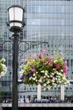 Blumenkorb und moderne Architektur Stockfotografie