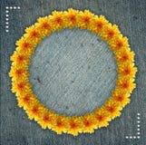 Blumenkreisrahmen mit Denimhintergrund Stockfotos